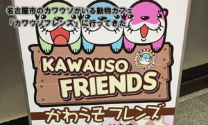 名古屋市のカワウソがいる動物カフェ「カワウソフレンズ」に行ってきた
