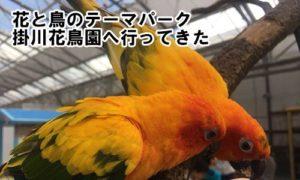 花と鳥のテーマパーク「掛川花鳥園」へ行ってきた