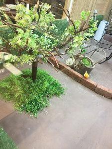 小鳥カフェ巣鴨店のふれあいルームの様子