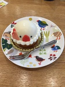 小鳥カフェの文鳥ケーキ