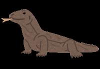 大きい爬虫類のイメージ