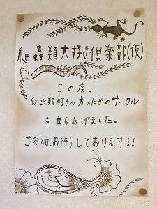 爬虫類大好き倶楽部ポスター