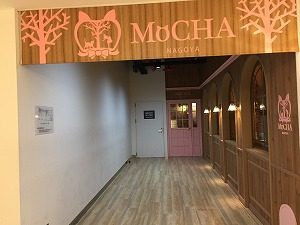 mochaの入り口