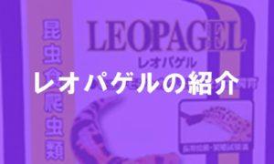 レオパゲルの紹介